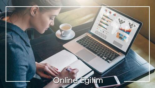 online eğitim, online danışmanlık, online yönetici koçu